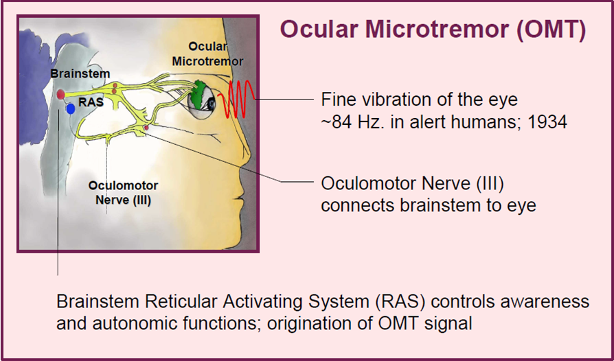 OMT Nerve Picture